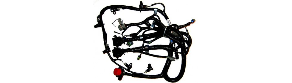 N14 CPlus Engine Wiring Harnesses